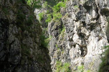 Bergamo Orridi della Val Taleggio