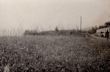 Campo estivo 1973 Albino