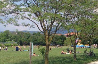 Il Parco Oasi Verde Seriate