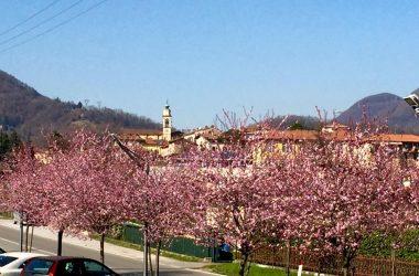 Il paese di Almenno San Bartolomeo