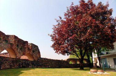 Immagini Borgo di Cologno al Serio