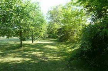 Parco Oasi Verde Seriate