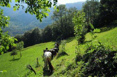 Agriturismo Scuderia della Valle di Valsecca