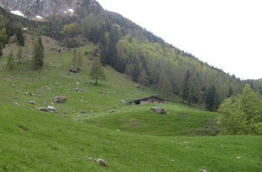 Baita Bassa di Fontanamora — presso Gandellino