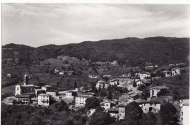 Bergamo Foresto Sparso