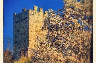 Cisano Bergamasco Il Castello