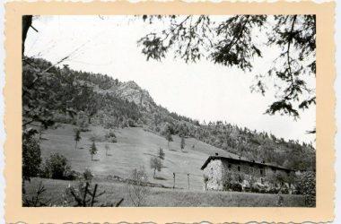 Colere nel 1950