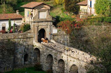Festival Pastoralismo Bergamo