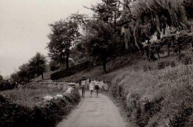 Il Campo estivo 1973 Albino