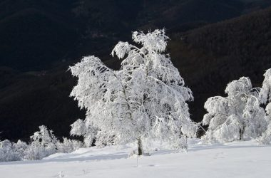 Inverno Palazzago