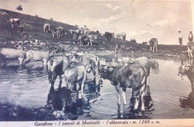 Monticelli - Gandino