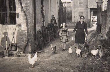 Mozzanica 1949