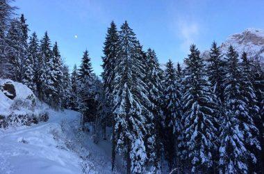 Neve a Roncobello