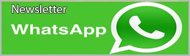 Whatsapp Vivere Bergamo