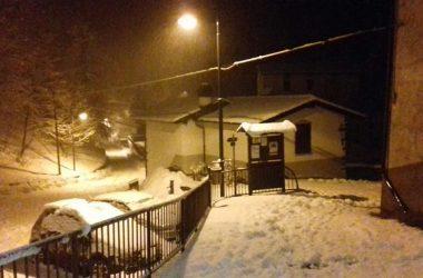 Ornica in inverno