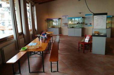 Parco archeologico Antica Parra Parre Bg