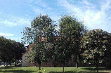 Parco san Bernardino Caravaggio