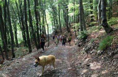 Passeggiate a Fuipiano Valle Imagna