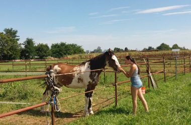 Ranch Cavalli a Covo