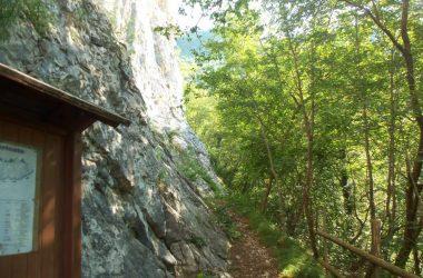 Roccia Arrampicata Sorisole