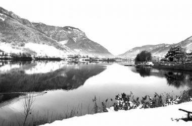 Spinone al Lago