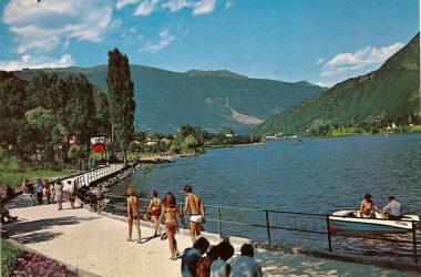 Spinone al Lago anni 60:70
