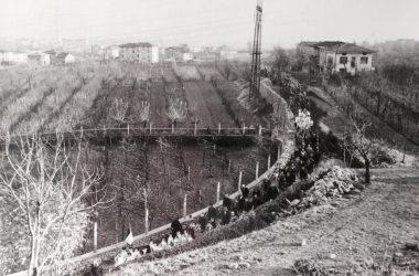Strada verso il cimitero di Volpino Novembre 1955