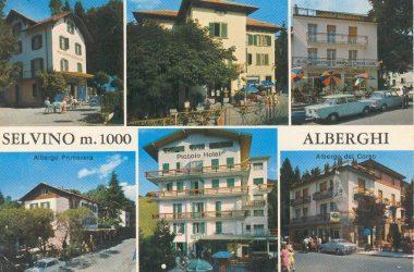 Vecchie Cartoline diSelvino