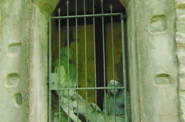 Via Crucis San Michele Arcangelo Torre de Busi
