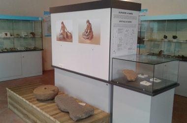 Visite Museo Antica Parra Parre